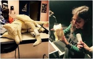 Marionnette de la renarde, du renardeau et Louise Moaty à la Maison de la musique de Nanterre