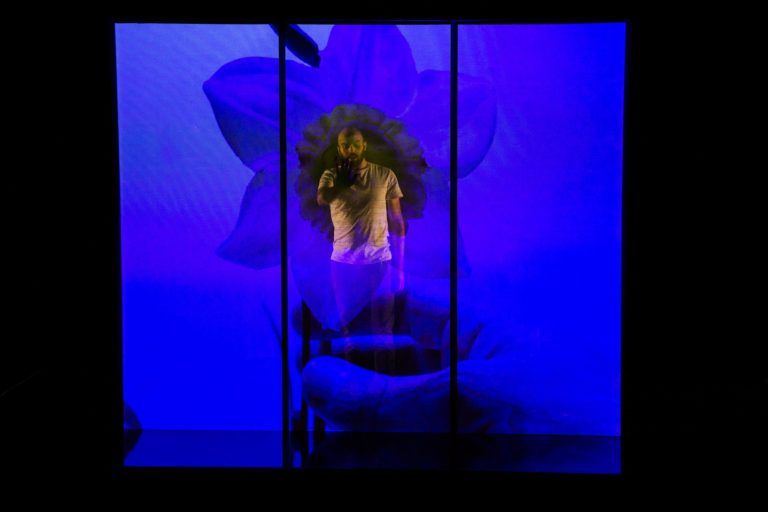 Narcisse, de Joséphine Stephenson et Marion Pellissier